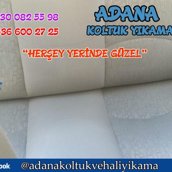 Adana Araç Koltuk Yıkama ( Fiat Palio )