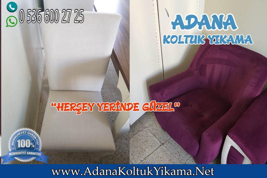 Adana Mavi Bulvar Sandalye Ve Berjer Yıkama