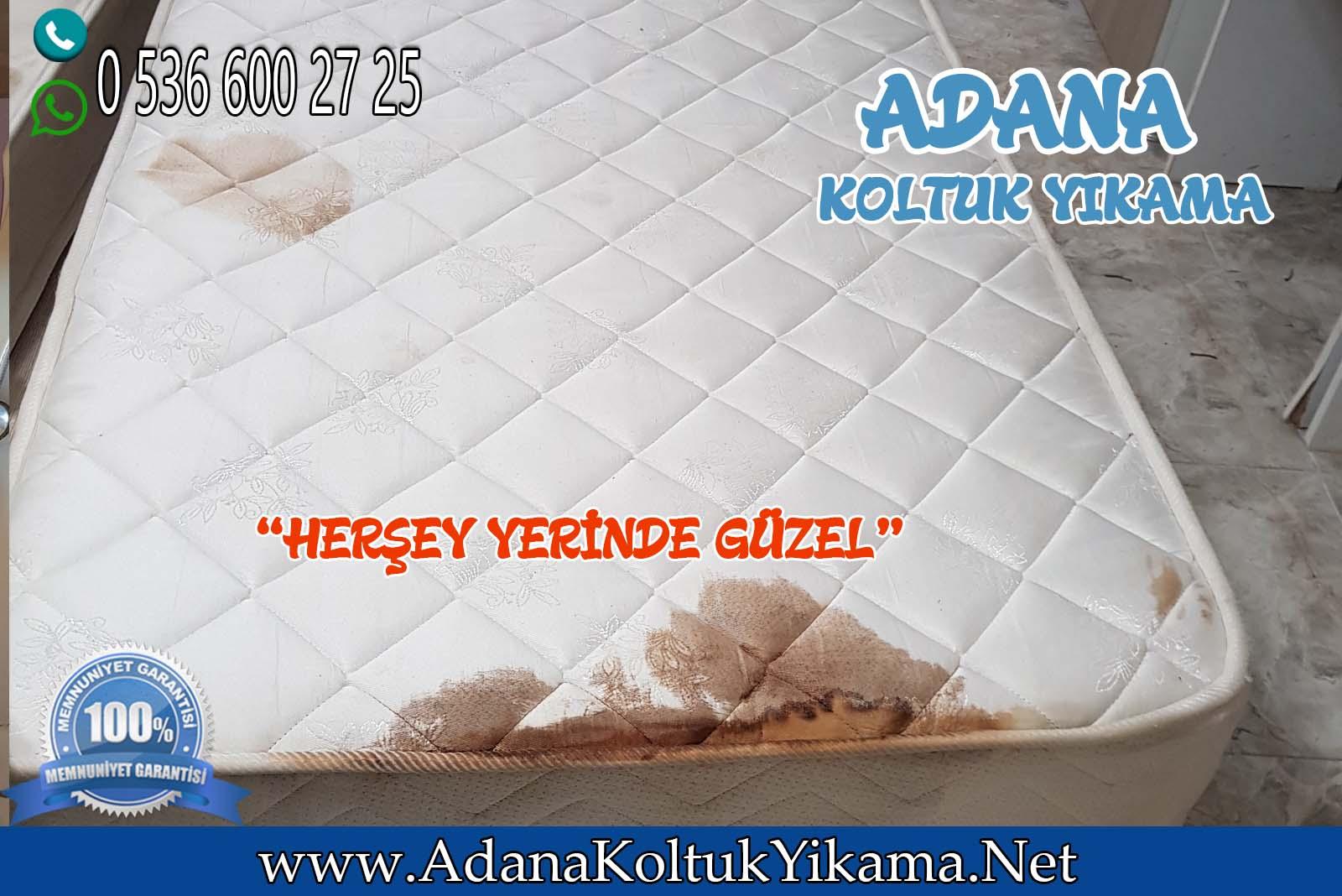 Adana Koltuk Yıkama + Anka Kız Yurdu + Yatak Yıkama