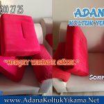 Adana Koltuk Yıkama - Sarıçam Koltuk Yıkama
