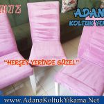 Adana Mavi Bulvar Sandalye Yıkama